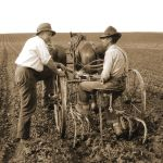The Legacy of the Land Grant
