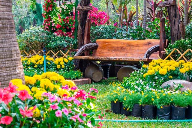imagen plantas de exterior