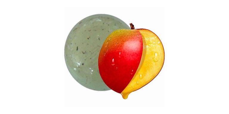 Bomba Baño Mango con Pétalos 140g SyS