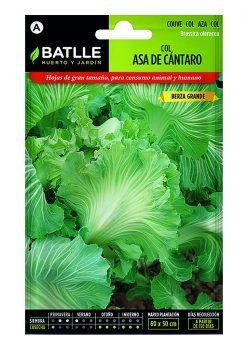 Semillas Col Asa de Cantaro Batlle