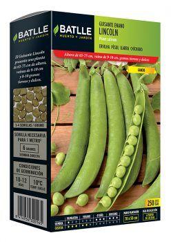 Semillas Guisante Lincoln (Pisum s) 250 g Batlle