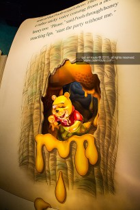 """""""The Many Adventure of Winnie the Pooh"""""""
