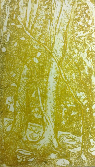 bathe-under-the-trees-under-the-stars-2011-copper-plate-etching-18-5x10-4cm-edition-of-100-yellow