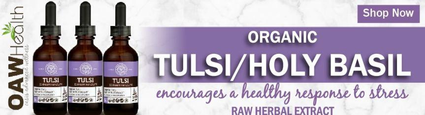 Organic Tulsi Holy Basil Extract