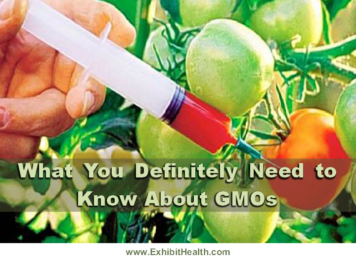 What You Definitely Need to Know About GMOs