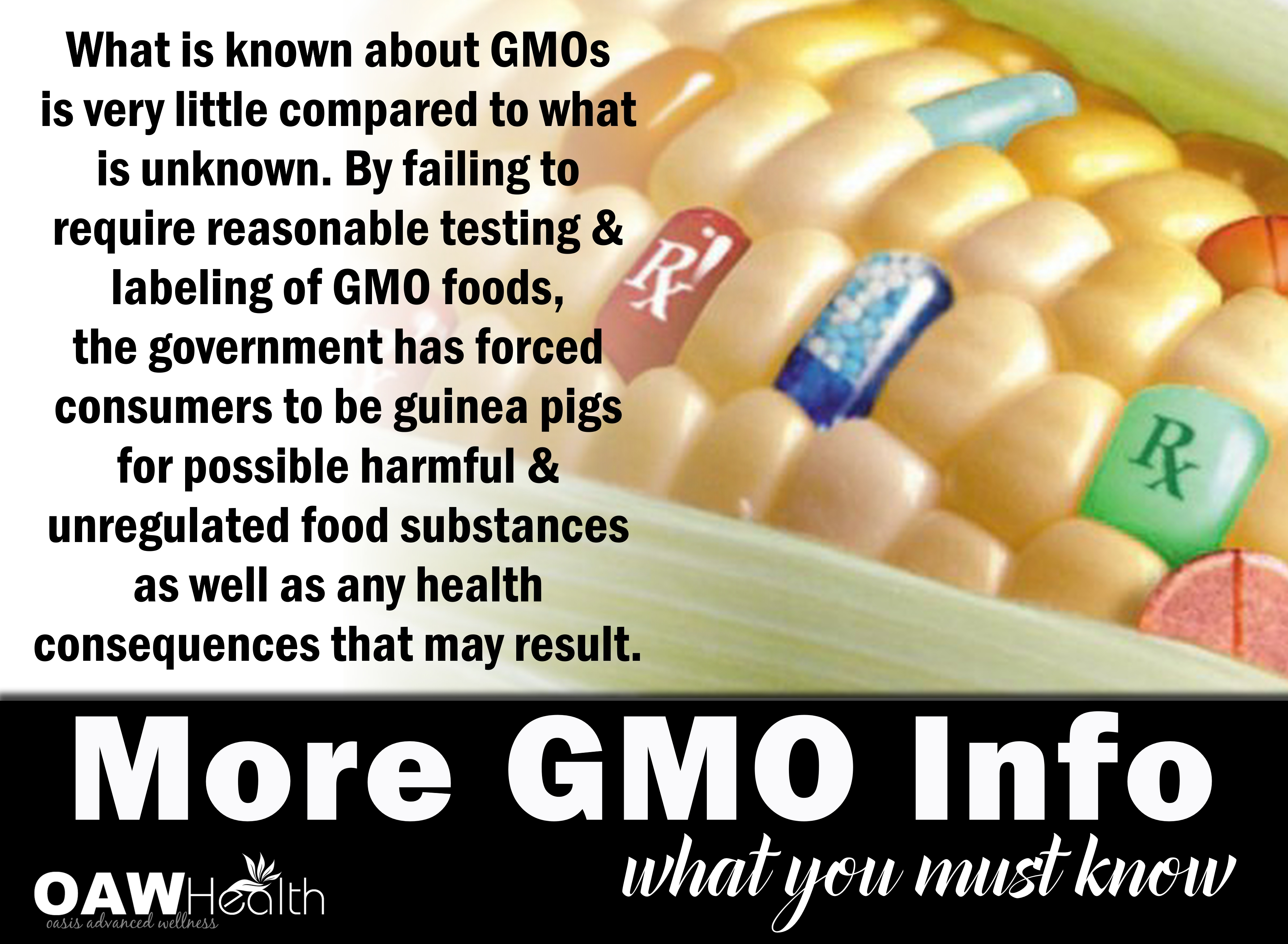 More GMO Info – What You Must Know
