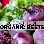 26 benefits of organic beets