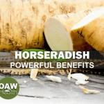 Horseradish Powerful Benefits