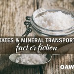 orotates and mineral transporters - fact or fiction