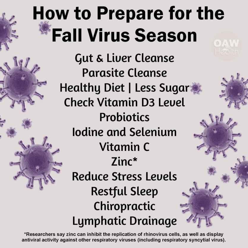 Preparing for the Fall Virus Season