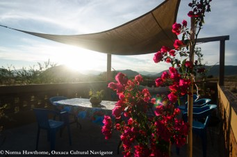 Casita Roof Sunset-3