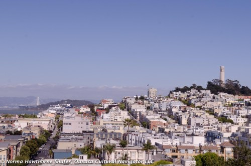 Coit Tower from the SF Art Institute rooftop terrace.