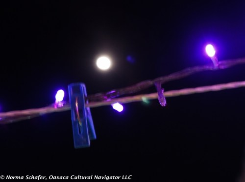 Moon coming up over purple twinkle lights