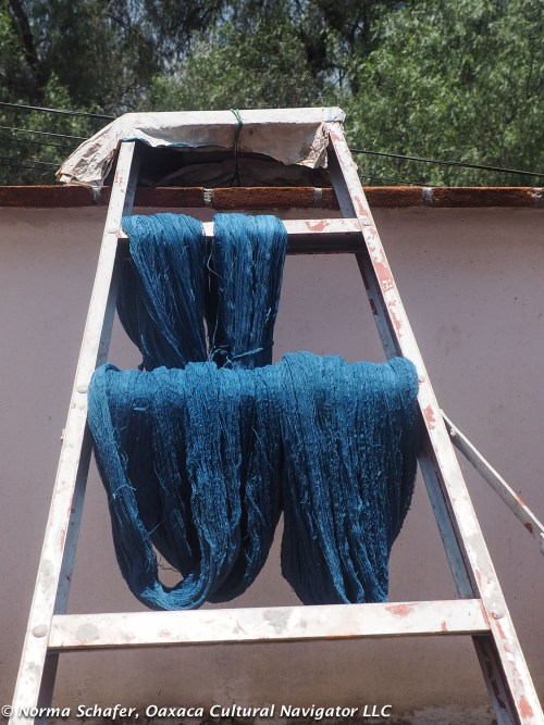 Indigo dyed wool drying on the rooftop terrace.