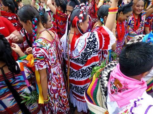 Shannon Pixley Sheppard, Flor de Piña dancers at the Guelaguetza desfile in Oaxaca.
