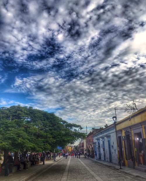 Omar Chavez Santiago. Calle Alcala, Afternoon in Oaxaca.