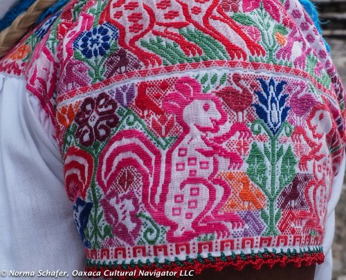 Sleeve detail, cotton embroidered blouse, Cuetzalan, Puebla
