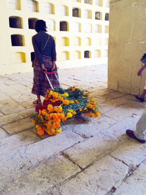 Oaxaca, bringing flowers to the grave, by Kathryn Leide