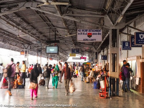 Agra Cantt train station. Bustling, finding our way to the right platform.