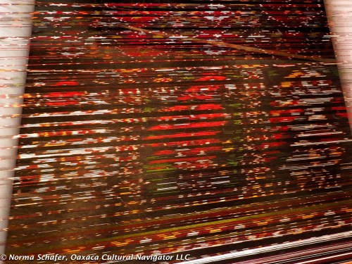 Can you see the bird and dancer in the warp threads?