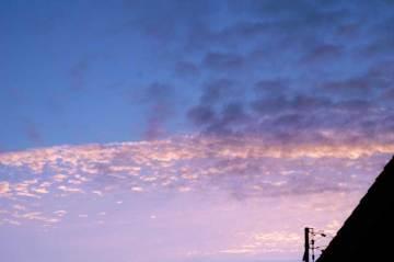 ↑クリックで拡大します 本日8/11日朝5時の空 秋っぽい雲が高いところに・・・