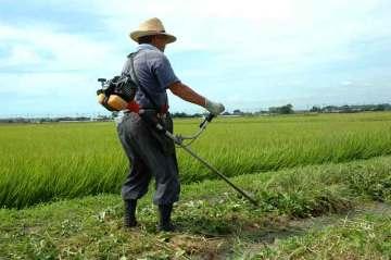 農道中央担当、Sさん。ひたすら真ん中を行きます。