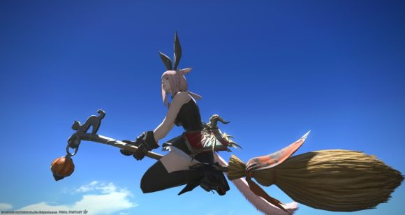 Eorzea Database: Witch's Broom | FINAL FANTASY XIV, The Lodestone