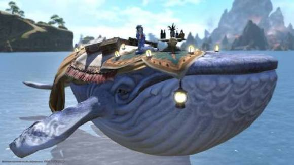 indigo whale mount | Tumblr