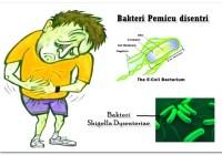 Mengatasi Penyakit Disentri (mejan)