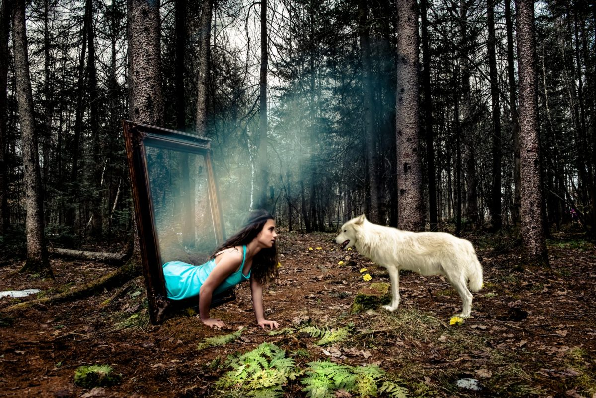 La belle et le loup