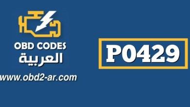 P0429 – حساس درجة حرارة حساس البيئة (NO2(