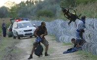 Hungarian-police-w_3419318b