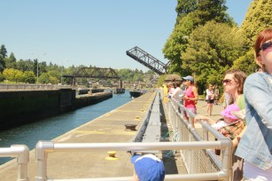 Another day, another site: Ballard Locks. Again, these are all from Erica.