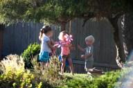 A few friends in the yard
