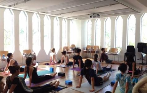 Conservatory Council Promotes Student Wellness