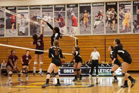 Terriers Defeat Yeowomen in Three Sets