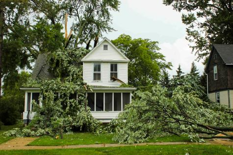 Microburst Winds Knock Out Power Lines, Trees