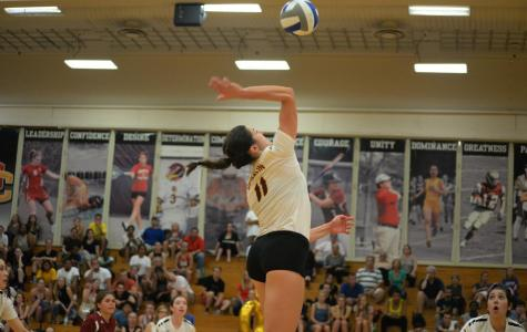Volleyball Gets Back on Track with Two Wins