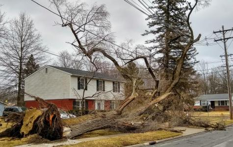 Windstorm Whips Through Northeast Ohio