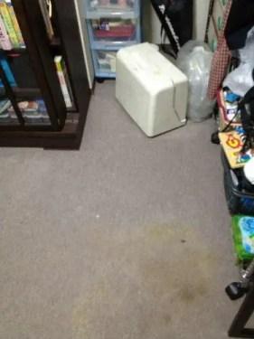 都島区の汚部屋片付け業者トリプルエスのそうじ作業事例