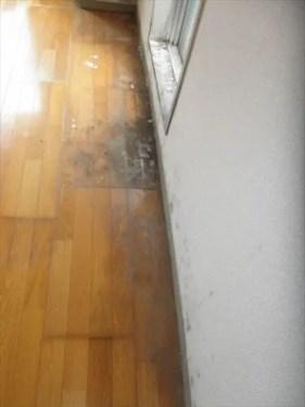 窓から滴る水滴の影響など、床・クロスのカビ汚れが目立つ