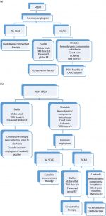 Acute Coronary Syndromes in Pregnancy