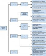 Preoperative counseling and management: Preoperative Evaluation, Informed Consent, Perioperative Planning, Surgical Site Infection Prevention, and Avoidance of Complications