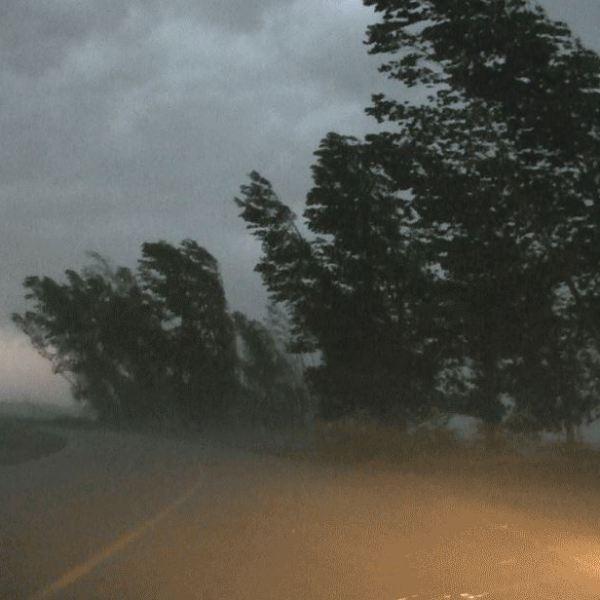 Cod Galben de vânt. Rafale până la 70 km/h. Vezi localitățile afectate