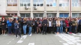 campus liceul teoretic fetesti (8)