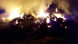 incendiu iazu 05
