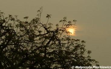 O świcie