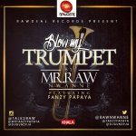 Fresh Song: Mr Raw ft. Fanzy Papaya – Blow My Trumpet