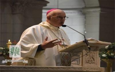 Mons. Olivera   Experimentemos todos la alegría de que Jesús camina a nuestro lado, que el Señor es misericordioso, y su misericordia es eterna