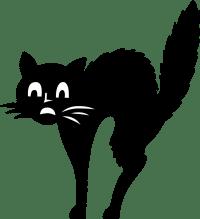 chat effrayé